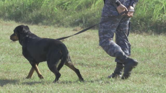 Soldado con perro. (4K