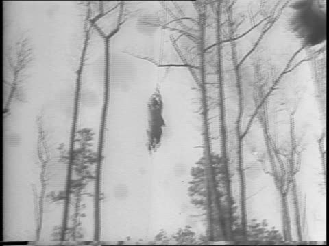soldiers climb across rope bridge / line of soldiers climb tree trunk while fellow soldiers watch / close up of soldier climbing tree trunk / soldier... - schützengraben stock-videos und b-roll-filmmaterial