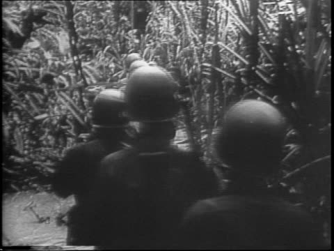 soldiers emerge from the trees of the jungle and walk slowly through the brush with their riffles they sit in the trees and fire on the japanese / a... - newsreel stock videos & royalty-free footage