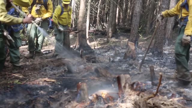 soldiers from the washington national guard out of snohomish perform mop up duties on the sheep creek fire near northport washington on august 5 2018 - stato di washington video stock e b–roll