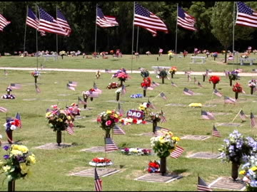 vidéos et rushes de tombe du soldat et drapeaux - mémorial