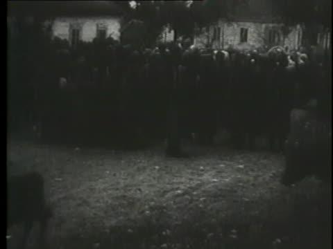 soldiers herd livestock from barns. - hermann goering stock videos & royalty-free footage