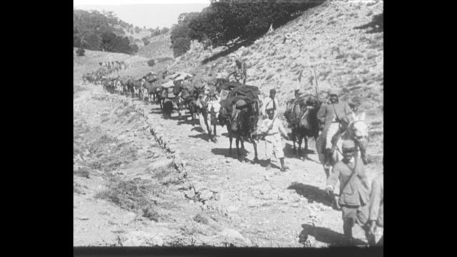 vidéos et rushes de soldiers march through a desert gully / donkeys pull heavily laden wagons along a rocky road / mules pull large supply wagons / vs groups of bou... - première guerre mondiale