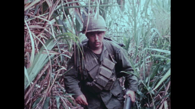 soldiers of the 101st airborne move through thick elephant grass higher than their heads as they patrol a mountain overlooking the a shau valley - vietnamkrieg stock-videos und b-roll-filmmaterial