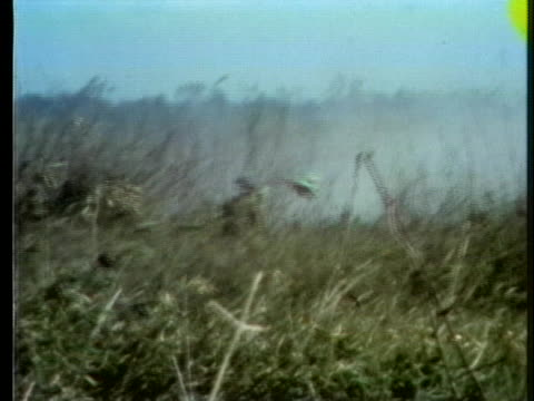 soldiers push through a smoky field in the battle for highway 13 near an loc in south vietnam. - south vietnam stock videos & royalty-free footage
