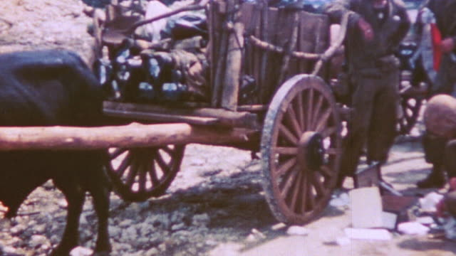 s soldiers resting near loaded ox cart and driving in military truck during world war ii pacific campaign - 牛車点の映像素材/bロール