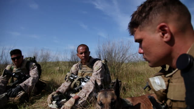 MS TD Soldiers talking in circle with dog AUDIO / Camp Pendleton, CA, United States