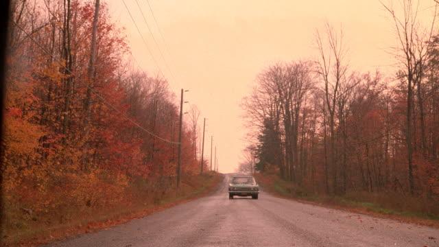 vídeos de stock e filmes b-roll de a solitary car drives along a tree-lined road. - grade de radiador