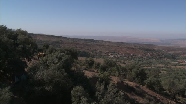 a solitary horse grazes on scrub brush overlooking a settlement in the atlas mountains. - shrubland stock videos & royalty-free footage