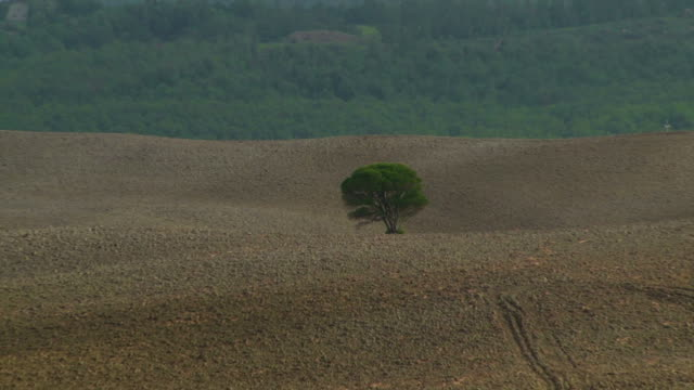 solitude on tuscany hills - plowed field stock videos & royalty-free footage