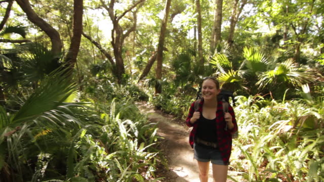 solo female backpacker exploring a forest - rucksack stock-videos und b-roll-filmmaterial