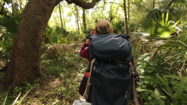solo female backpacker exploring a forest - 雨林点の映像素材/bロール