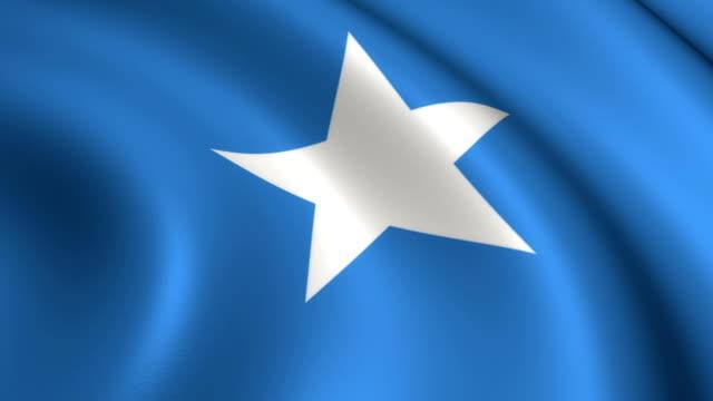 Somalische vlag loopbare