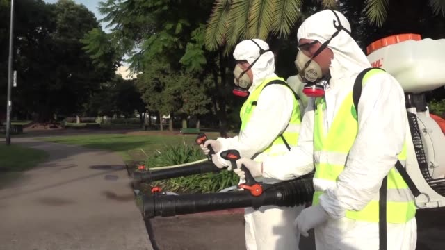 Some 15000 cases of dengue fever have been recorded in Argentina since the beginning of 2016 the largest outbreak since 2009 according to health...