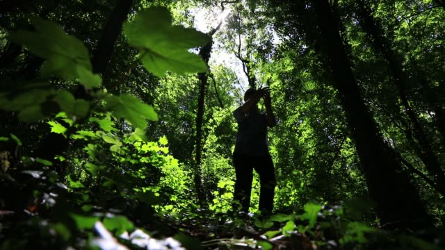someone practices tai chi chuan in a forest during the lockdown period due to the fight against covid19 outbreak on may 6, 2020 in chambery, france. - durevolezza video stock e b–roll