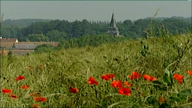 somme 90th anniversary remembrance events; france: somme: ext / dawn high angle general view over misty woodland with silhouette of church steeple... - steeple stock videos & royalty-free footage