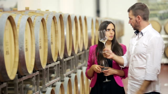 sommelier explaining wine tasting - white wine stock videos & royalty-free footage