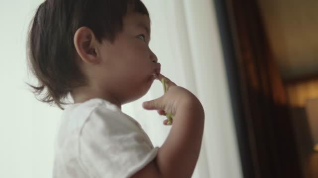 vídeos de stock, filmes e b-roll de filho a brincar com brinquedos em casa - bebês meninos
