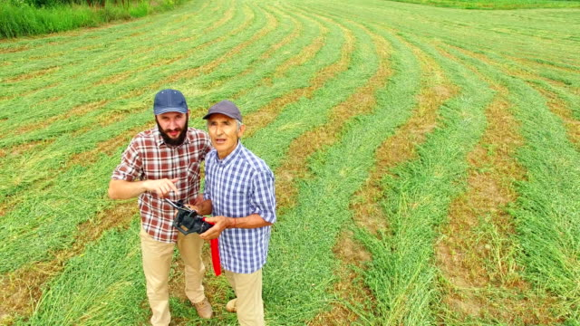 sohn zeigt vater farmer drohne mit fernbedienung in abgestreiftem feld fliegen - cereal plant stock-videos und b-roll-filmmaterial