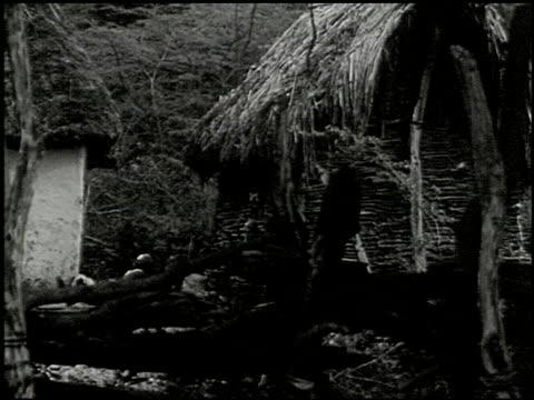 vídeos de stock e filmes b-roll de song of the voodoo - 6 of 8 - veja outros clipes desta filmagem 2434