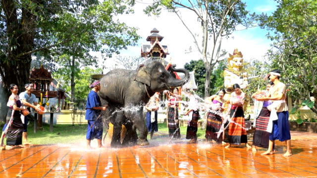 4k songkran festival - beautiful women and men wear traditionnel thai costume splashing water with elephant on temple background - religion stock videos & royalty-free footage