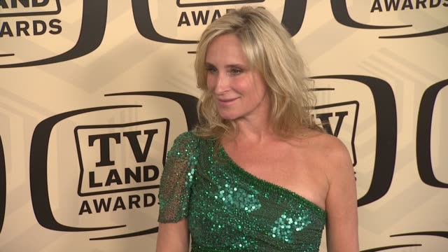 sonja morgan at tv land awards 10th anniversary arrivals at lexington avenue armory on april 14 2012 in new york ny - tv land awards stock videos and b-roll footage