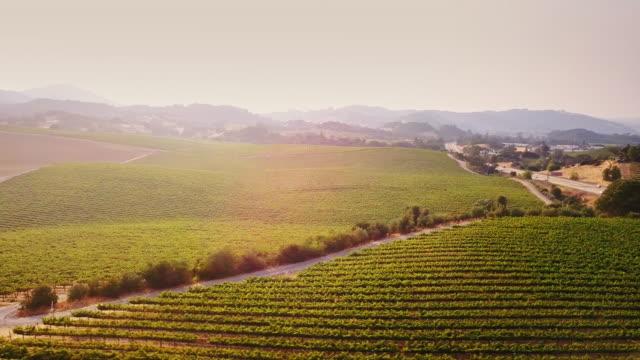 Sonoma Country Landscape