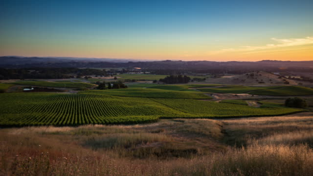 sonoma vineyard sunset - time lapse - patchwork landscape stock videos and b-roll footage