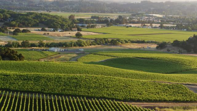 Sonoma Wine Country, California - Drone Shot