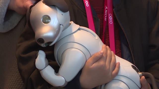 vídeos de stock e filmes b-roll de sony anuncio el jueves que su perro robot aibo que funciona con inteligencia artificial estara disponible en el mercado estadounidense para la... - sony