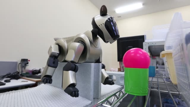 A Sony Corp Aibo robotic dog sits on block while walking at the A·Fun Co repair facility in the VAIO Corp plant in Azumino Nagano Prefecture Japan on...