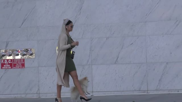 sophia vegas takes her dog for a walk in beverly hills in celebrity sightings in los angeles - celebrity sightings stock videos & royalty-free footage