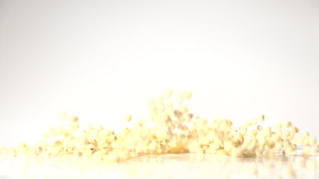 sorghum seeds dancing captured with high speed sync - sorghum stock videos & royalty-free footage