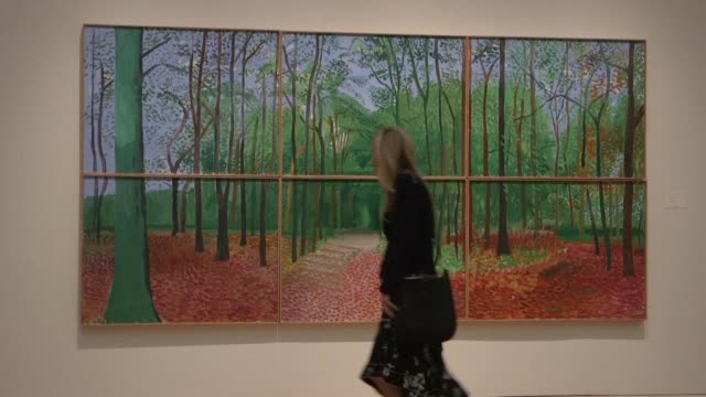 sotheby's new york holds a media preview for evening auctions of impressionist and modern art and contemporary art - sotheby's stock videos and b-roll footage