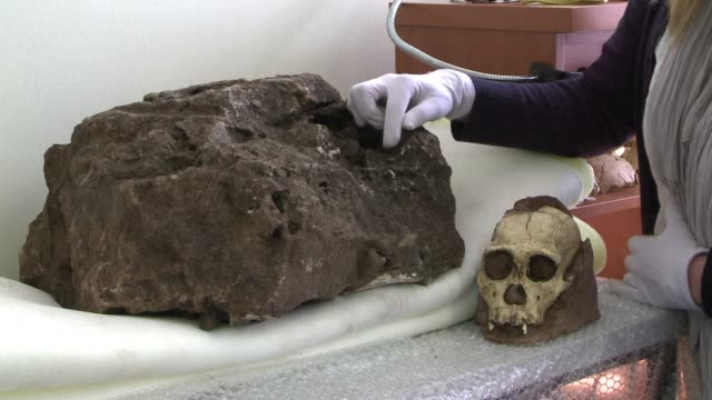South African scientists say they have uncovered the most complete skeleton yet of an ancient relative of man hidden in a rock excavated from an...