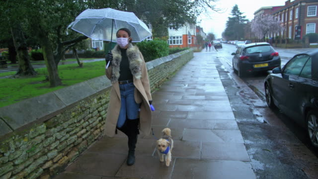 south african woman wearing face mask walks small dog - 犬の散歩点の映像素材/bロール