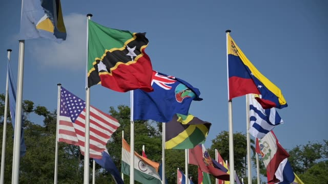 south and central american flags flying in the wind - uruguaian flag stock videos & royalty-free footage