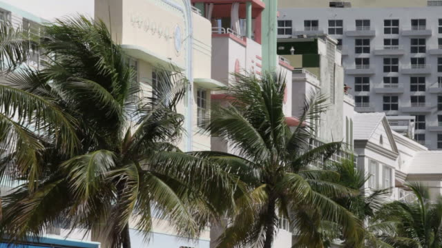 south beach art deco - south beach stock videos & royalty-free footage