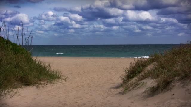 vídeos de stock, filmes e b-roll de costa de south beach, florida - duna