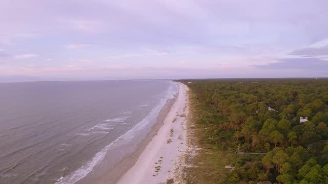 south carolina beach - sea grass plant stock videos & royalty-free footage