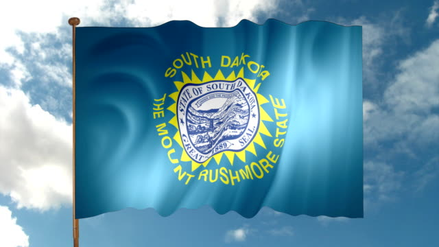 south dakota state flag - south dakota stock-videos und b-roll-filmmaterial