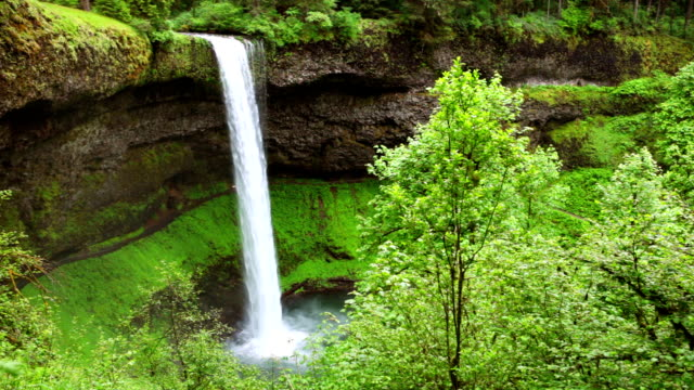 south falls in the silver falls state park, oregon, usa - oregon us state stock videos & royalty-free footage