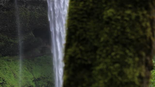LS DS, South Falls, Silver Falls State Park, Oregon