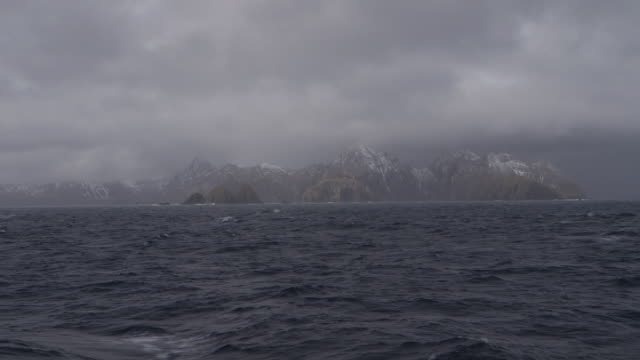 south georgia island, 2015 - insel south georgia island stock-videos und b-roll-filmmaterial