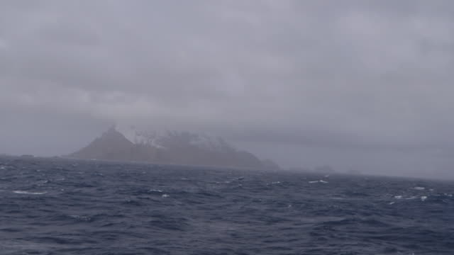 vídeos de stock e filmes b-roll de south georgia island, 2015 - ilha geórgia do sul