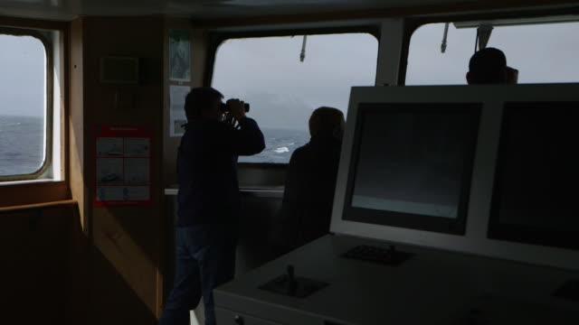 vidéos et rushes de south georgia island, 2015 - à bord