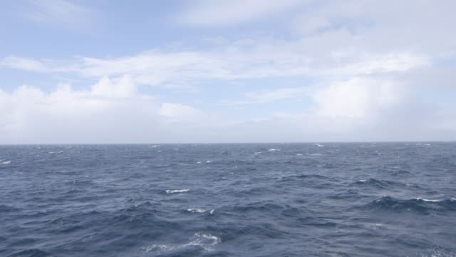 south georgia island, 2015 - seascape stock videos & royalty-free footage