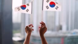 South Korea flag flying in the wind
