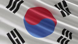 South Korea Flag in the wind concept
