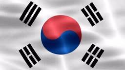 South Korea flag - realistic waving fabric flag